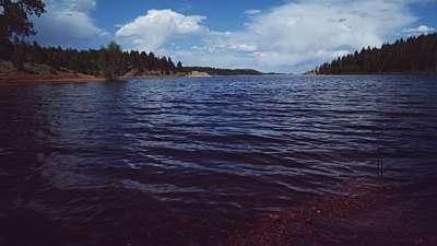 Nature Walk Panorama Still