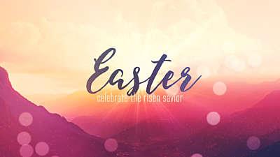 Easter Week Easter Still