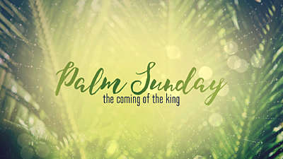 Easter Week Palm Sunday Still