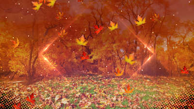 Fall Background Still Volume 2