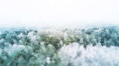 Let It Snow Above Still
