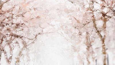 Let It Snow Canopy Still