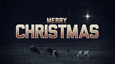 Christmas Night Merry Christmas Still