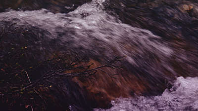 Nature Walk Flow Still