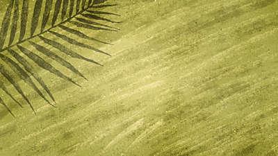 Painted Palm Sunday 03