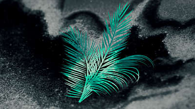 Palm Sunday Volume 5 Background 3 Still