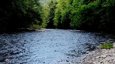 River Wild 11 Still