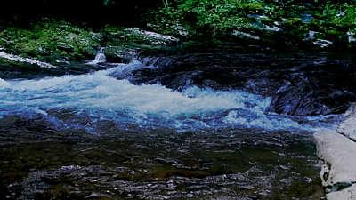 River Wild 13 Still