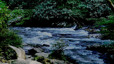 River Wild 18 Still