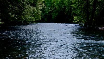 River Wild 6 Still