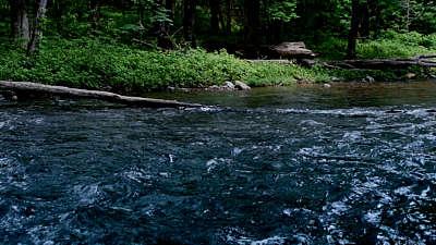 River Wild 7 Still