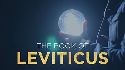 The Book of Leviticus: Lightbulb 2