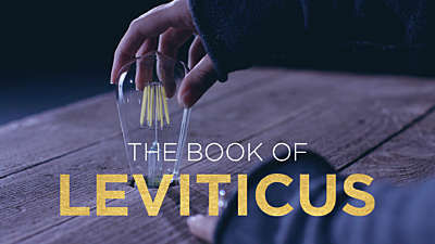 The Book of Leviticus: Lightbulb