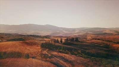 The Hills Fields Alt Still