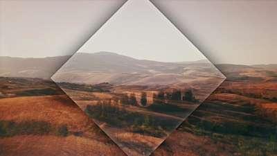 The Hills Fields Still