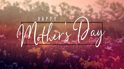Wildflower Mother's Day Still