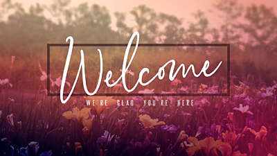 Wildflower Welcome Still
