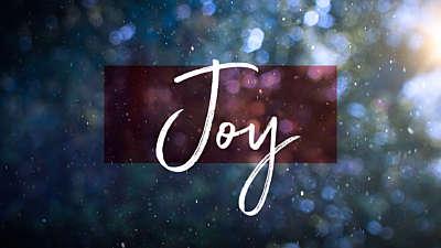 Winter Snow Joy Still